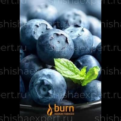 Burn Blueberry Mint